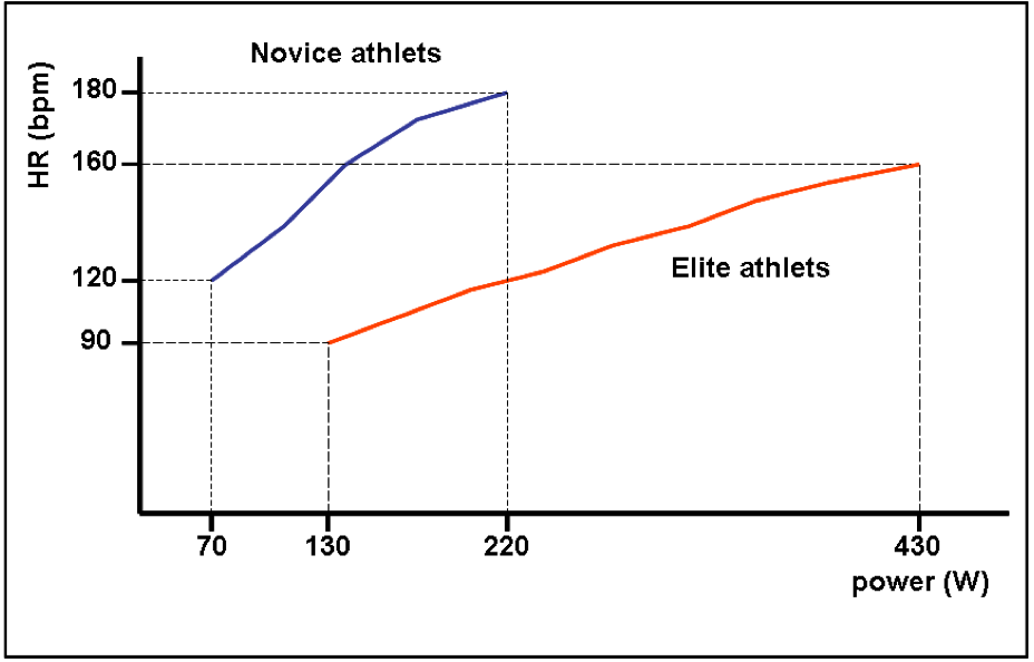 Max Heart Rate Chart For Athletes Rebellions